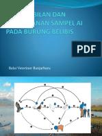 Pengambilan dan penanganan sampel AI pada burung belibis.pptx