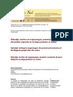 Malvestitti 2019 dossier 5to sol