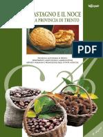 libro+noce+e+castagno.pdf