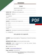 VITAE_DE_MUDEMEX_FINAL[1]