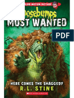 Here_Comes_The_Shaggedy