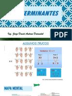 TEMA 4 PRESENTACIÓN DETERMINANTES