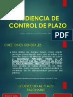 AUDIENCIA DE CONTROL DE PLAZO