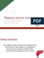 1753387_repasotercerparcial.pdf