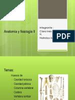 Anatomía y fisiología II.pptx
