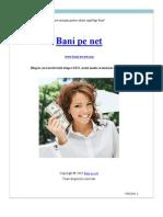 Care Sunt Pasii Pentru a Obtine Rapid Page Rank