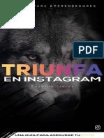 Triunfa en instagram