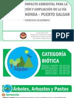 categoría biótica final.pdf