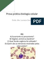 Prova prática biologia celular