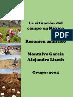 Situacion Campo México