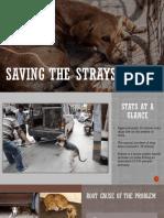 Saving the Strays.pdf