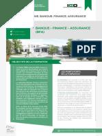 Plaquette-master-banque-finance-assurance-BFA-2019 (2)