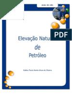 Elevação Natural de Petroleo
