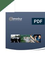 Amerisur  Resources plc ® formato de requistos 27.pdf