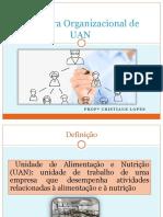 Aula 2_estrutura organizacinal UAN
