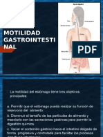 MOTILIDAD GASTROINTESTINAL.pptx