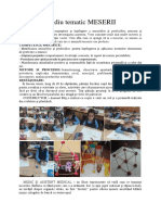 studiu_tematic_meserii_din_romania.docx