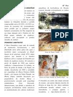 A PRÉ-HISTÓRIA DA AMAZÔNIA