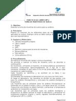 PRACTICA_DE_CAMPO__2_electiva_ICS[1][1]