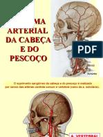 33 Sistema Arterial