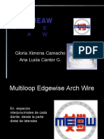 meaw-130916091922-phpapp02.pdf