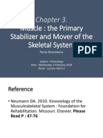 Chap 2. Muscle. The Primary Stabilizer and Mover of the Skeletal System