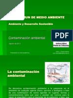 2. Contaminación.pdf