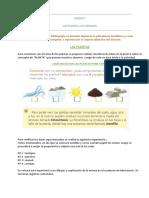 CARPETA DID PLANTAS Y ANIMALES.docx