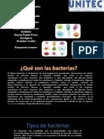 """Equipo 3 """"Bacterias"""" ENF02A 20-2"""