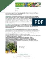 Zitruspflanzen.pdf
