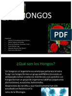 """Equipo 7 """"Hongos"""" Enf02a 20-2"""