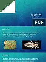 """Equipo 8 """"Parásitos"""" ENF02A 20-2"""