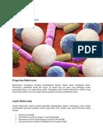 Bakteremia
