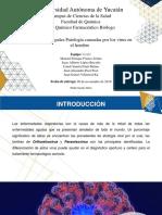 ADA2_Orthomixovirus_y_Paramixovirus_MICOLOGÍAYVIROLOGÍA_2018.pptx
