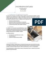Informe CALICATAS.docx