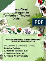 Mengidentifikasi Keanekaragaman Tumbuhan Tingkat Divisi