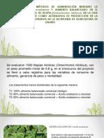 EVALUACIÓN DE TRES MÉTODOS DE ALIMENTACIÓN MEDIANTE LA