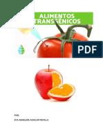 Tarea Eva Qué son los alimentos transgénicos.pdf