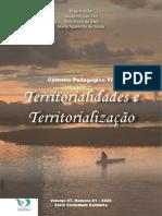 Caderno Pedagógico VII - Livro Impresso(1).pdf