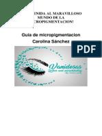 Guia micropigmentacion CAROLINA SANCHEZ.docx