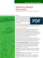Brochure Geospatial Business Intelligence