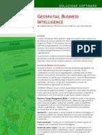 Brochure Geospatial Business Intelligence