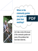 Where in the Garden Can Grade One Plant Their Seedlings