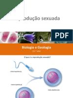 05 Reprodução sexuada