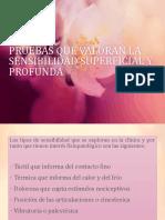 3.- PRUEBAS QUE VALORAN LA SENSIBILIDAD  Y MAS.pptx