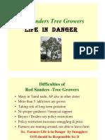 Red Sanders Tree Growers life in danger