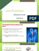 spinal cord injury  1   1