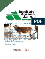 RELACION NUTRICION.docx