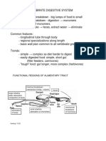 cvhgiverthdout2015 (1).pdf
