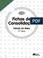 EM3_FC